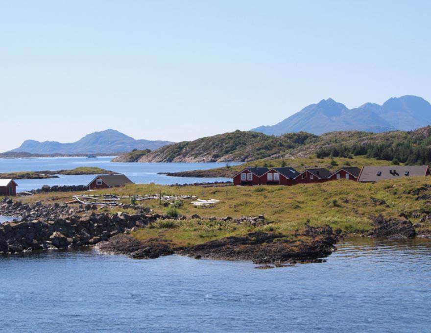 Vega Archipelago - Eider, White and beautiful scenery!