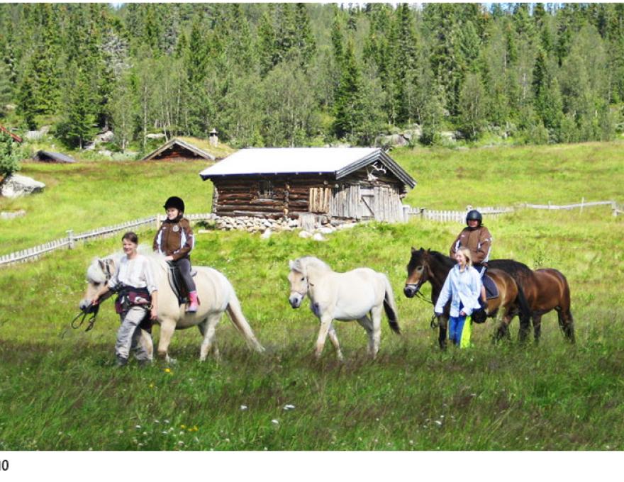 Paardrijden bij Seterliv in Tinn