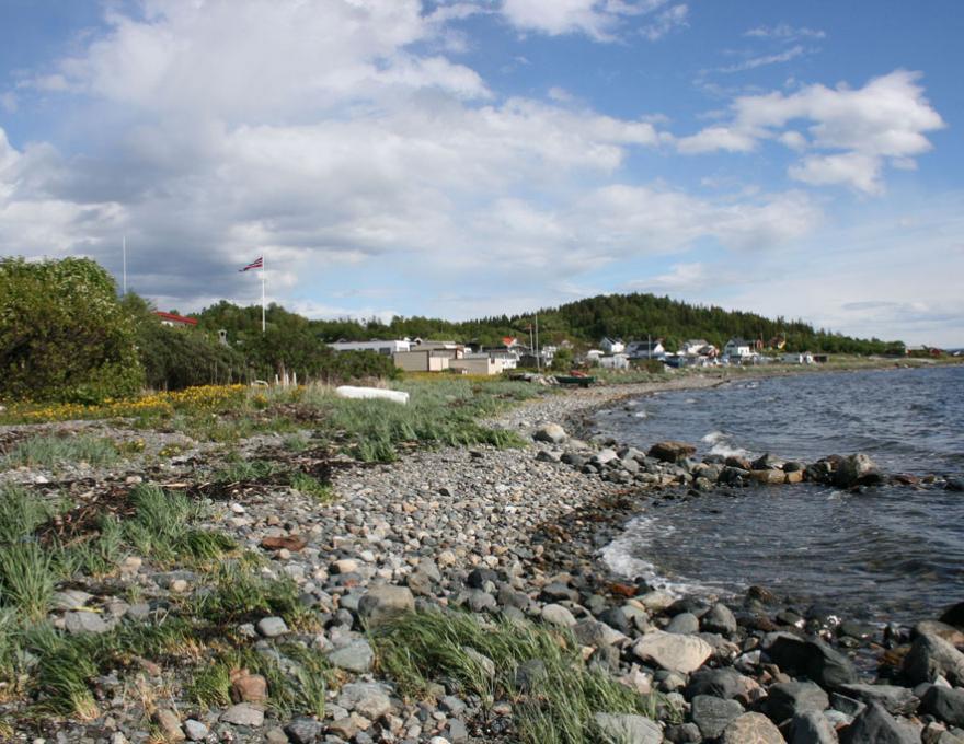 © Pluscamp Hauganfjæra Camping