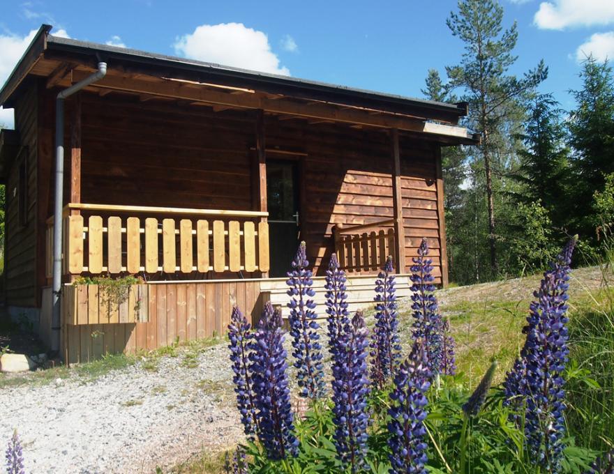 © Oddestemmen Camping- Hytte 4