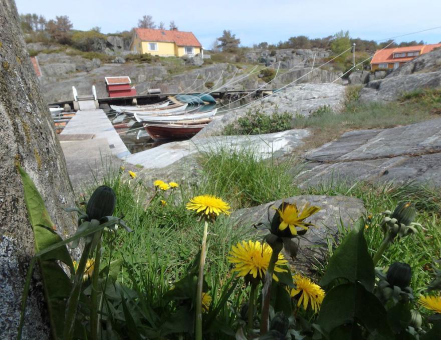 © Kristiansand Feriesenter